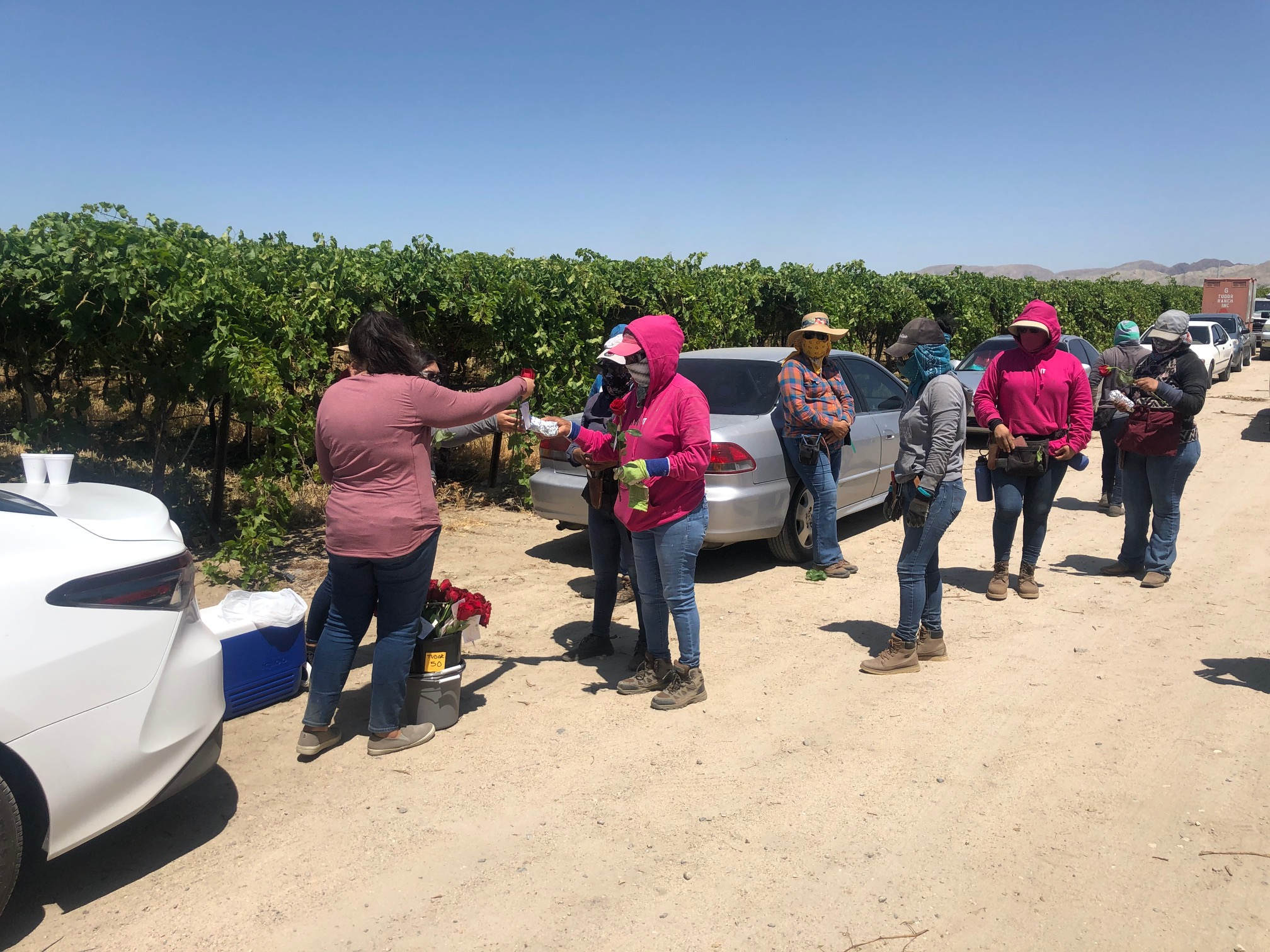 Farmworkers line up to receive gifts and roses from CFF for Mother's Day.