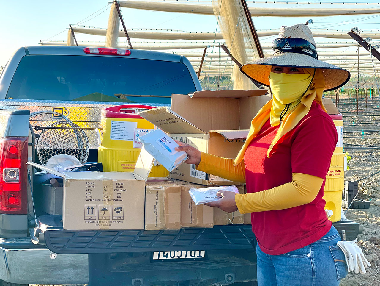 A person waring a tall straw hat, yellow face scarf, and red shirt is standing in front of the bed of a truck. The truck has large insulated water dispensers in it and several cardboard boxes. The person is holding a package of alcohol wipes and appears to be smiling behind their face scarf. They are standing in a vineyard with rows of vines and netting behind them.
