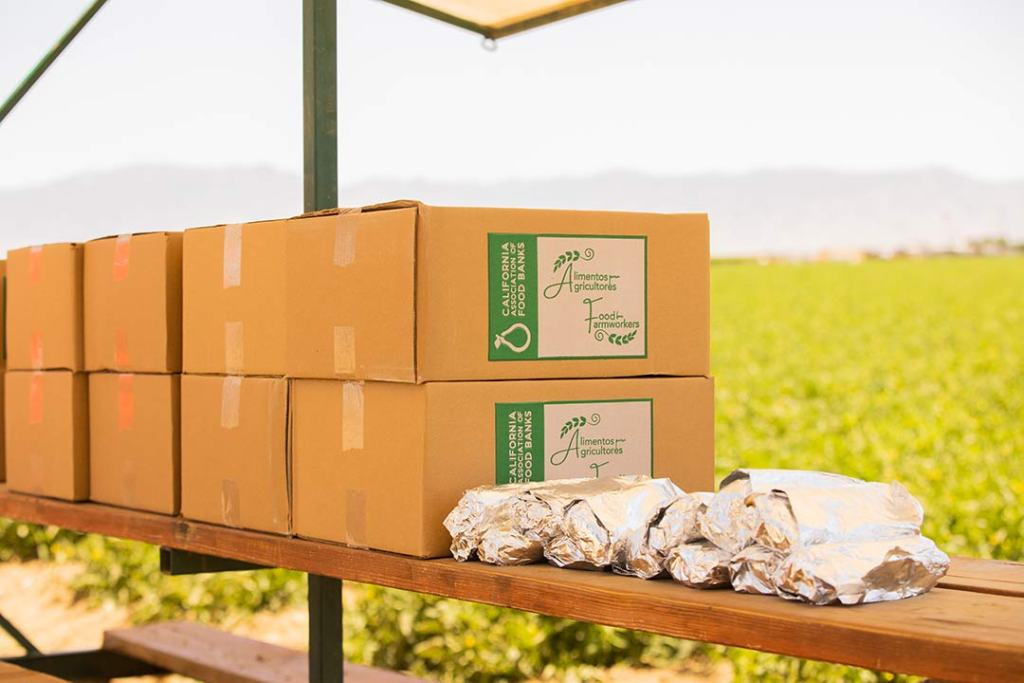 Volunteers from the California Farmworkers Foundation distribute food to farmworkers on Mother's day
