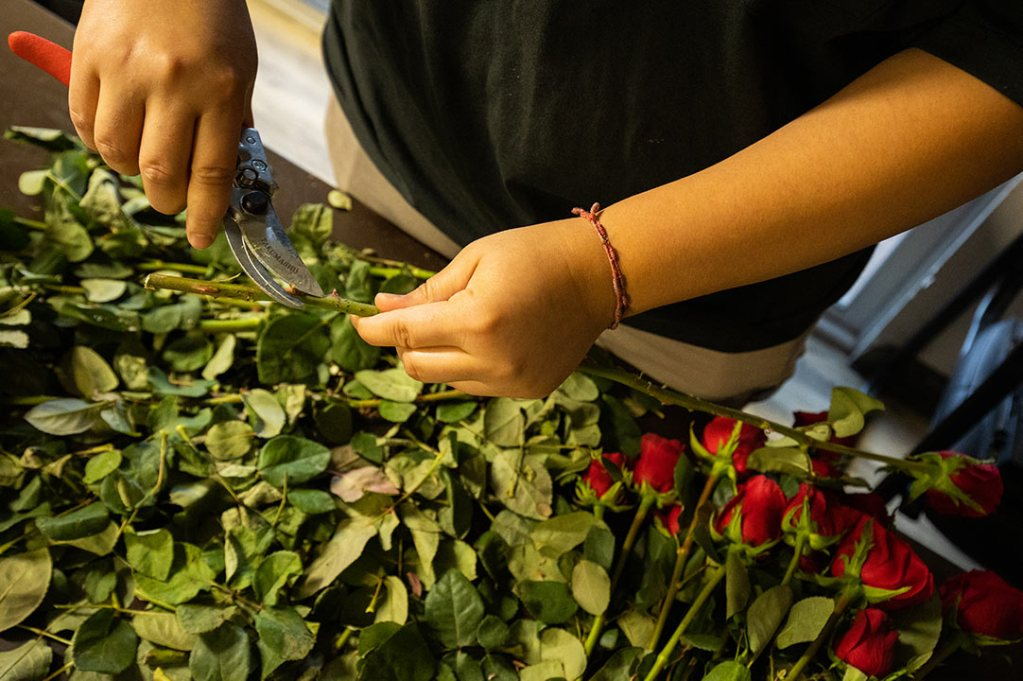 A volunteer prepares roses for mothers who work in the fields.